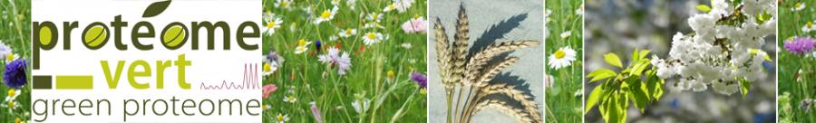 Bienvenue sur le site des Journées du Protéome Vert 2019