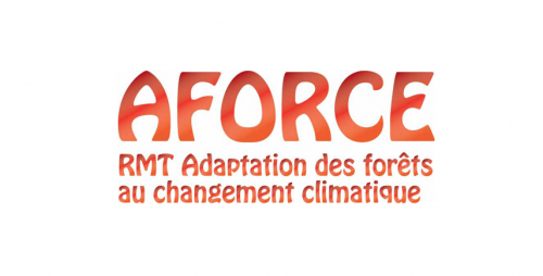 Logo RMT AForce